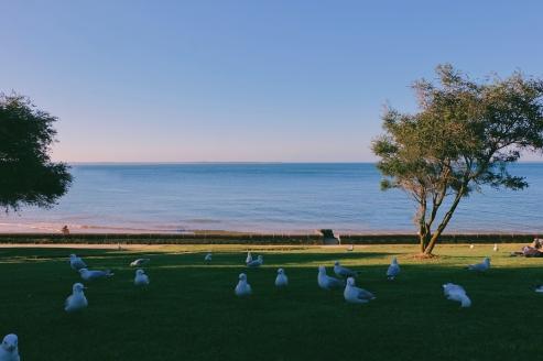 Bersantai duduk-duduk di Cowes Beach, Australia